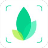 拍图识物app最新版