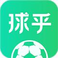 球乎app安卓版高清直播