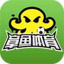 章鱼足球手机版