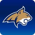 山猫体育app最新消息