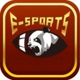 熊猫电竞安卓版
