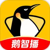 企鹅直播平台